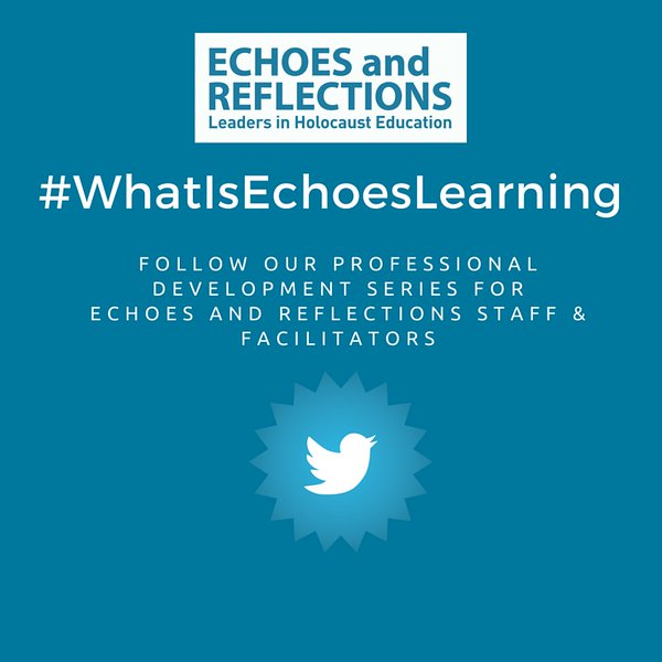#Whatisechoeslearning